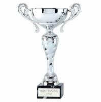Prospect11 Presentation Cup Silver 11 5/8 Inch