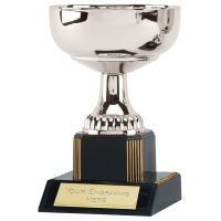 Westbury5 Silver Presentation Cup Silver 5.25 Inch