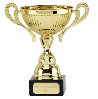 Turin Gold Presentation Cup