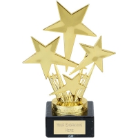 North Star Trophy - Gold - 6.75 inch (17cm) - New 2018