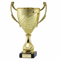 Canberra Cup Gold 9.5 Inch (24cm) : New 2019