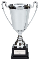 Moment Presentation Cup Trophy Award 8 1/8 Inch (20cm) : New 2020
