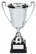 Moment Presentation Cup Trophy Award 9.75 Inch (24.5cm) : New 2020