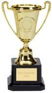 Mini Moment Presentation Cup Trophy Award Gold 6 Inch (15cm) : New 2020