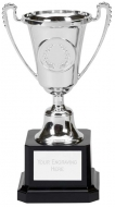Mini Moment Presentation Cup Trophy Award Silver 6 Inch (15cm) : New 2020