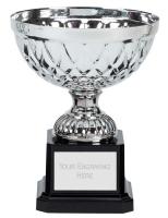 Tweed Mini Presentation Cup Trophy Award Silver 5 Inch (12.5cm) : New 2020
