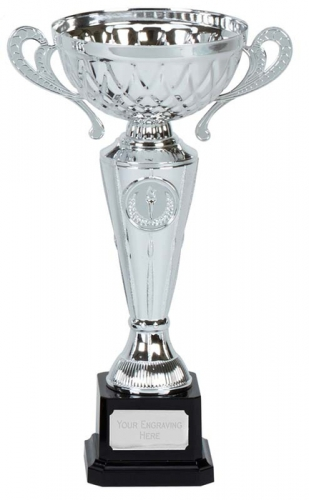 Tweed Presentation Cup Trophy Award with Handles 9.25 Inch (23.5cm) : New 2020