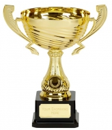 Motion Gold Presentation Cup Trophy Award 9 7/8 Inch (25cm) : New 2020