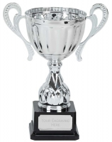Link Track Trophy Award Silver Presentation Cup Trophy Award 10.5 Inch (26.5cm) : New 2020