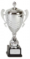 Link Apex Silver Presentation Cup Trophy Award 13.75 Inch (35cm) : New 2020