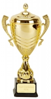 Link Apex Gold Presentation Cup Trophy Award 16 5/8 Inch (42cm) : New 2020