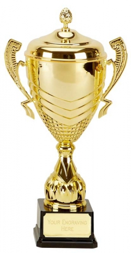 Link Apex Gold Presentation Cup Trophy Award 16 5/8 Inch (42cm) : New 2020