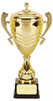 Link Apex Gold Presentation Cup Trophy Award 18.75 Inch (47.5cm) : New 2020