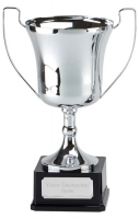 Elite Pro Presentation Cup Trophy Award 12 5/8 Inch (32cm) : New 2020