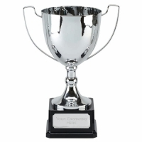 Elite Ace Presentation Cup Trophy Award 10 7/8 Inch (27.5cm) : New 2020