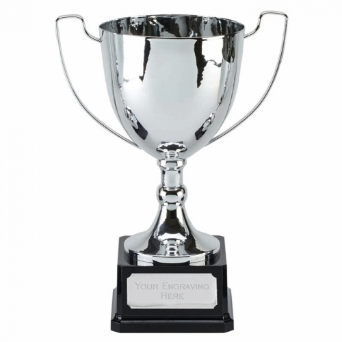 Elite Ace Presentation Cup Trophy Award 10 7/8 Inch (27.5cm) : New 2020
