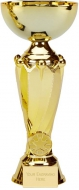 Tower Gold Presentation Cup Trophy Award 10.75 Inch (27cm) : New 2020