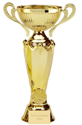 Tower Twin Gold Presentation Cup Trophy Award 11.25 Inch (28.5cm) : New 2020