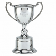 Classic Presentation Cup10 Pewter 10 Inch