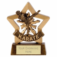 Mini Star Male Karate Trophy Award AGGT 3.25 Inch