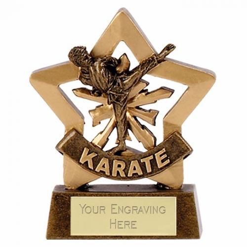 Mini Star Male Karate AGGT 3.25 Inch