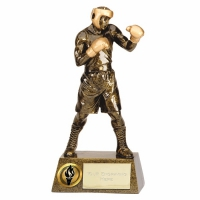 Pinnacle9 Boxing AGGT 9.5 Inch