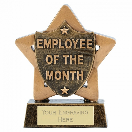 Mini Star Employee of the Month 3.25 Inch (8cm) : New 2019