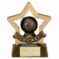 Mini Star Cricket AGGT 3.25 Inch