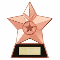 Star Plaque4 Bronze 4.75 Inch