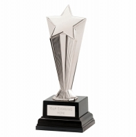 Recognition Award Star