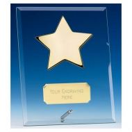 Crest5 Gold Star Jade Plaque Jade/Gold 5 Inch