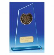 Peak6 Jade Award Jade/Gold 8 Inch