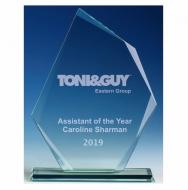 Paragon Jade Glass Trophy Award Jade 7.5 Inch