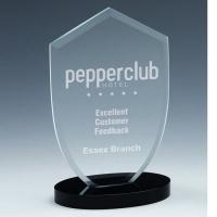 Oval Pinnacle Jade Glass Award 7 Inch (17.5cm) : New 2020