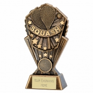 Cosmos Squash 7 inch (17.5cm) : New 2019