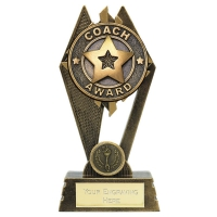 Peak Coach Award 7 inch (17.5cm) : New 2019