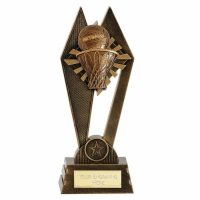 Peak Netball Trophy Award 7 Inch (17.5cm) : New 2020