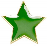 Badge20 Flat Star Green Green 20mm