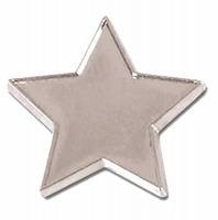 Badge20 Flat Star Silver 20mm