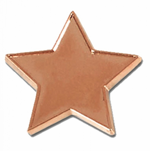 Badge20 Flat Star Bronze Bronze 20mm
