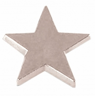 Badge16 Flat Star Silver Silver 16mm