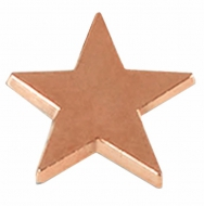 Badge16 Flat Star Bronze 16mm