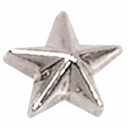 Silver Raised Star Badge Silver 8mm