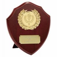 Triumph8 Presentation Shield Trophy Award 8 Inch (20cm) : New 2020