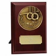 Vision Gymnastics Trophy Award Presentation Plaque Trophy Award 4 Inch (10cm) : New 2020