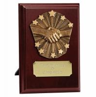 Fair Play Presentation Plaque Trophy Award 7 inch (17.5cm) : New 2020