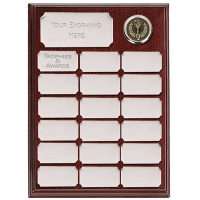 Ashfield Economy Presentation Plaque Silver 9 Inch