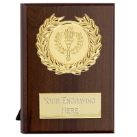 Maxi Target Plaque Gold 4 Inch (10cm) : New 2019