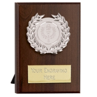 Maxi Target Plaque Silver 4 Inch (10cm) : New 2019